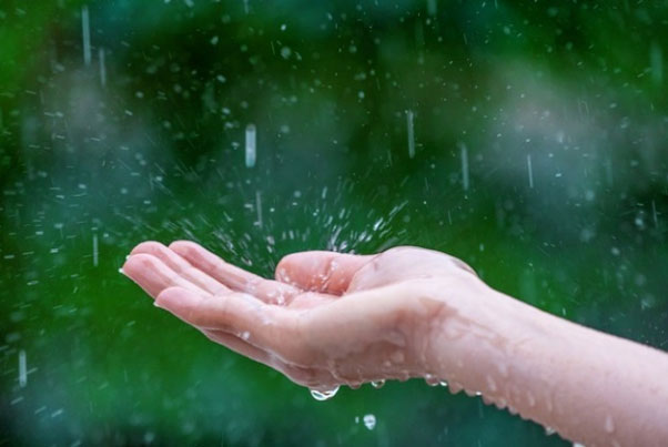 Why you need to start rain water harvesting